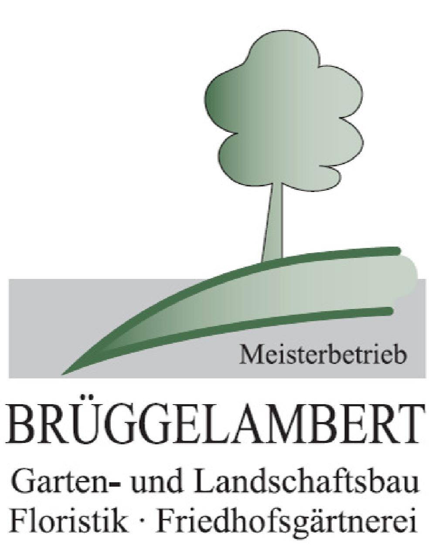 Brüggelambert